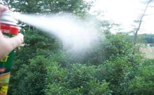 spray antivespe