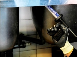 applicazione gel blatticida
